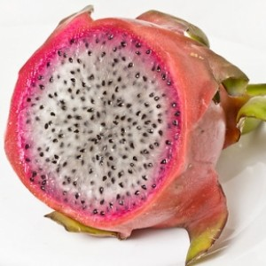 "Profile picture of Conner ""Dragonfruit"" Flynn"